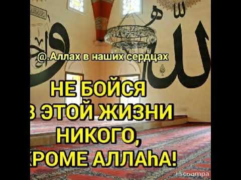 Баъди рафтанӣ пайғамбари Худо аз Макка