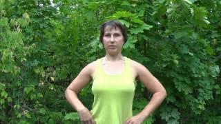 Занимаемся вместе Урок 3. Упражнения для укрепления спины и формирования правильной осанки