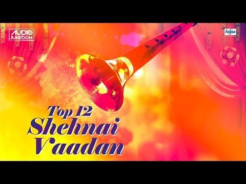 Top 12 Shehnai Vadan Jukebox | Shehnai Instrumental Music | Indian Shehnai Music