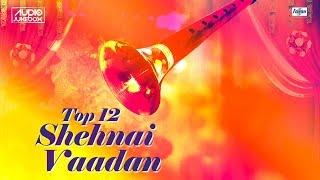 Presenting top 12 shehnai instrumental music (indian music) 'shehnai vadan' jukebox. collection of indian album. listen to this ear plea...