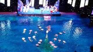Ёлка на воде в бассейне Олимпийский