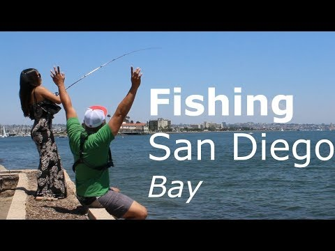"San Diego Bay Fishing From Shore - "" She beat me """