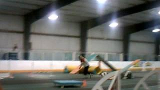 Windi & Wick Jack Russell Agility #2 Tallahassee