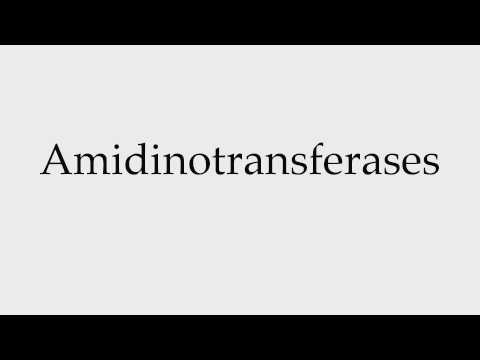 How to Pronounce Amidinotransferases