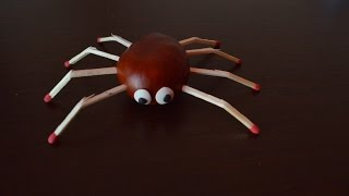㋛ Паук: Spider