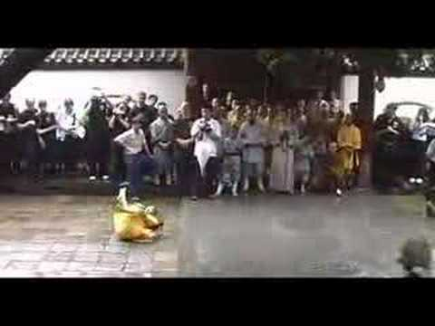 Shaolin Temple - Monkey form