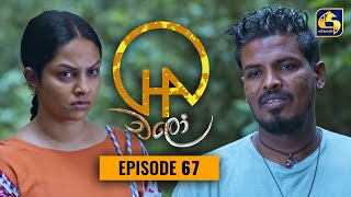 Chalo    Episode 67    චලෝ      13th October 2021 Thumbnail