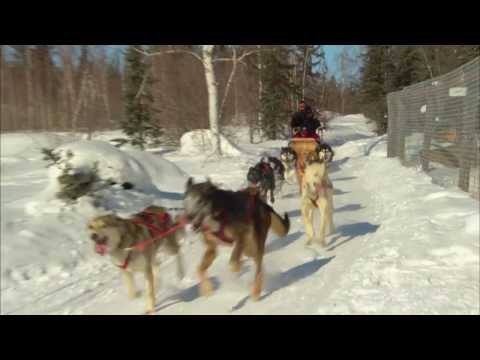Northwest Territories Tourism - Let Me Tell You What I Saw - Winter Version