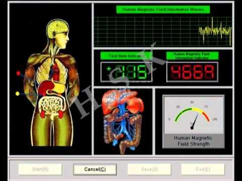 【Sub-health Analyzer - Quantum Health Analyzer Machine - Suppliers 】