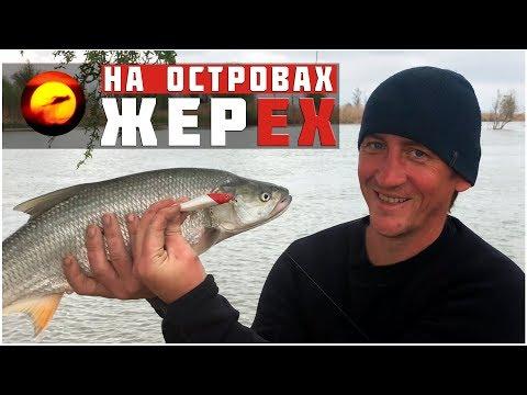 Жерех на всплеск / Ловля на кастмастер и воблер / Рыбалка на спиннинг весной в Астрахани