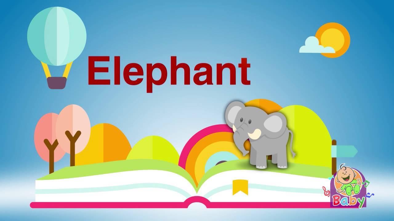 كلمات عربي إنجليزي فيل طيور بيبي Youtube