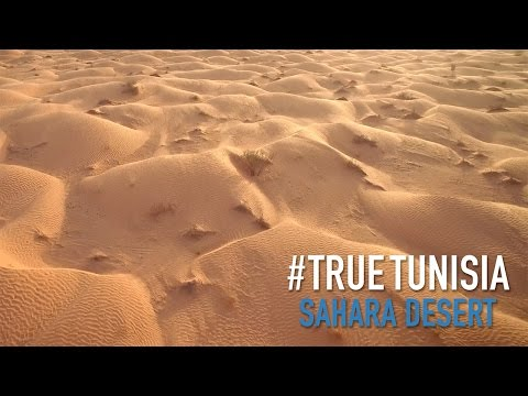 Tunisian Sahara: in the middle of sea of sand... True Tunisia / season 2 (day 7 & 8)