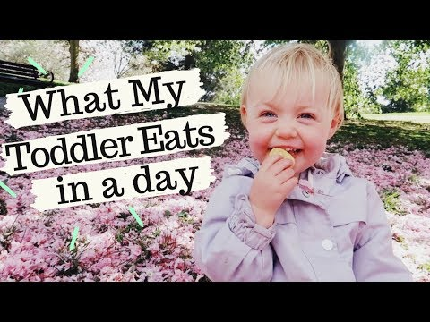AD - What My Toddler Eats In A Day | SJ STRUM