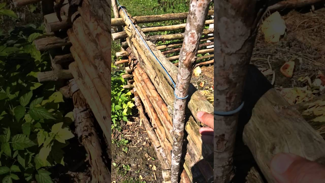 Bio Kompostbehälter - Youtube Bio Komposter Aus Holz Selber Bauen Anleitung In Einfachen Schritten
