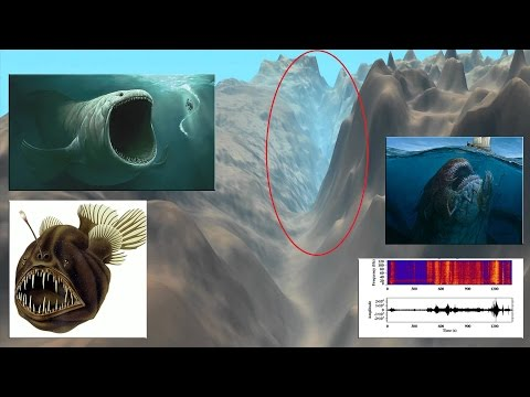 El Misterio que se Esconde en el Lugar Más Profundo del Océano