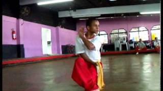 Nosso Kung Fu / 我們的功夫