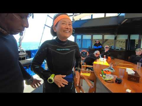 Y-kiki Trip Videos   Raja Ampat