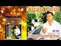 Download NELUTA BUCUR - Am o patima si un dor (AUDIO OFICIAL)