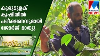 George Mathew with experiments in Pepper crops | Nattupacha | Manorama News