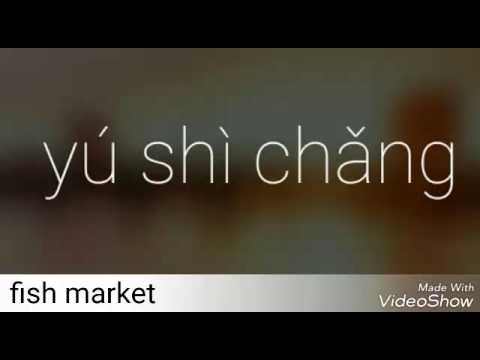 Mandarin Video Journal: fish market