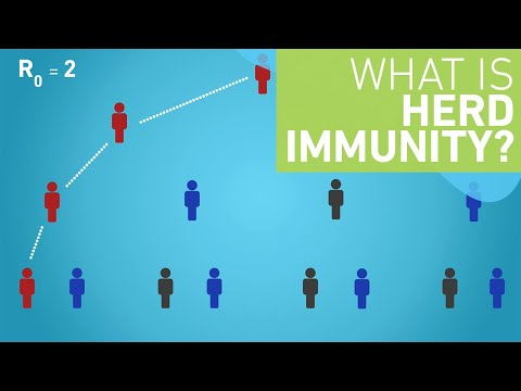 What is Herd Immunity?