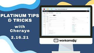 Workamajig Platinum Tips & Tricks