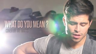 Justin Bieber - What Do You Mean (Acoustic Cover by Tay Watts) - Official Music Video