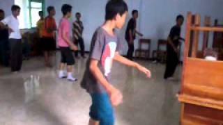 LEPIDOPTERA SHUFFLE-Training Shuffle.