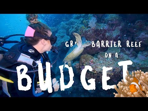 Great Barrier Reef On A BUDGET