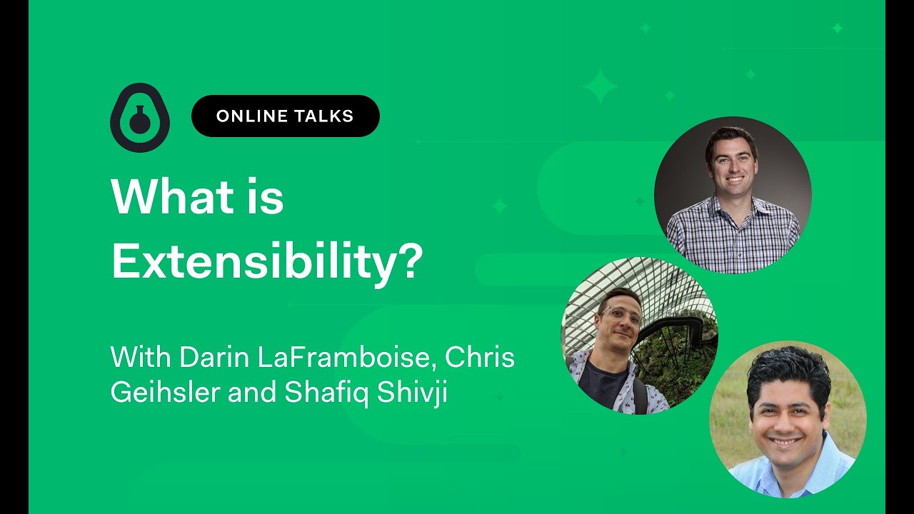 What is Extensibility?
