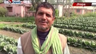 नेपालको माटोमा तरकारी खेती गरी लाखौ कमाउँदै भारतीय किसानहरु - MAIN NEWS