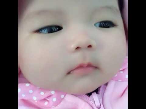 Anak Bayi Imut Youtube