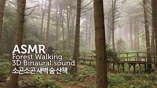 ASMR Talking ● 소곤소곤 새벽 숲 산책 3D 바이노럴 사운드   Forest Walk & Talk 3D Binaural Sound   Roland CS-10EM