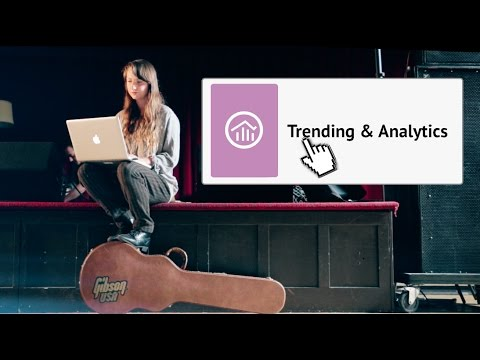 Trending Reports for Spotify and Apple Music |CD Baby