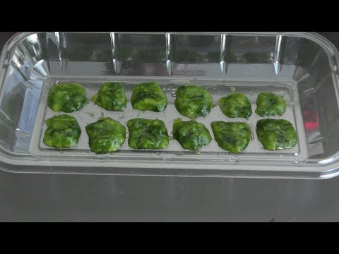 Frozen Algae Fish Food