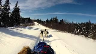 Traineau CANADALASKA Thumbnail