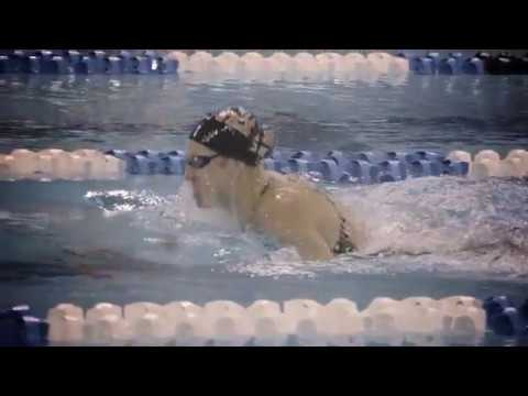 Texas Swimming and Diving 2016 Intro Video