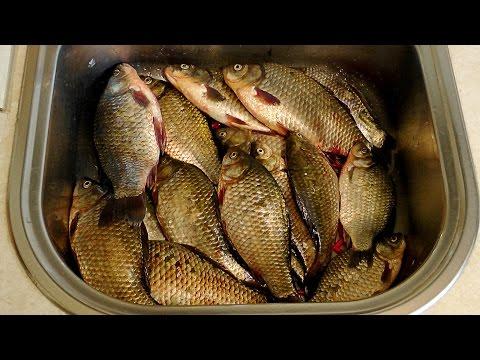 приготовление насадки для ловли сазана