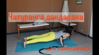Чатуранга дандасана. Позы йоги для начинающих. Как научиться.