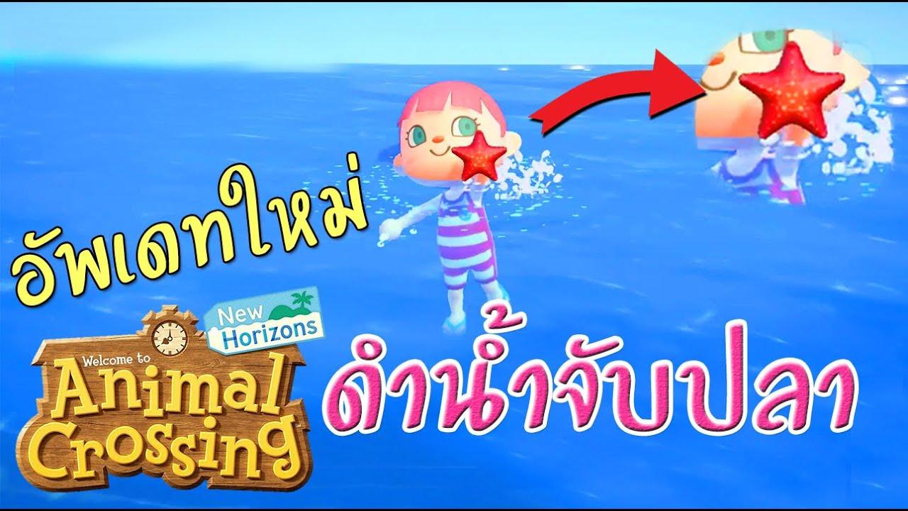 Animal Crossing : อัพเดทใหม่ ดำน้ำฤดูร้อน