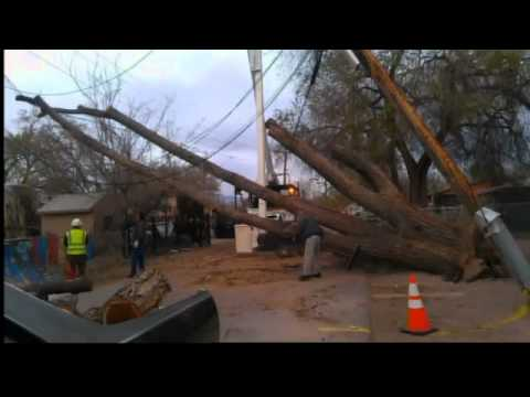 Viewer photos of March's wind storm