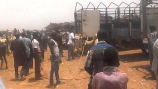 Marché de Torodi Niger