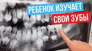 дочка стоматолога читает снимки зубов