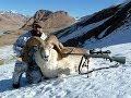 Marco Polo Hunting in Kyrgyzstan - Recep Ecer - Ali Konyar _ Kırgızistan Marco Polo Avı