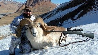 Marco Polo Hunting In Kyrgyzstan   Recep Ecer   Ali Konyar  Kırgızistan Marco Polo Avı