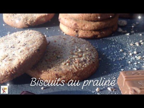 biscuits-pralinÉ/pÉpites-de-chocolat
