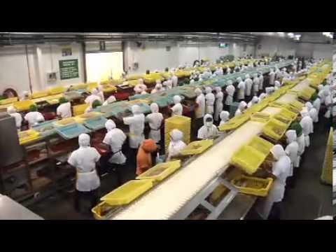 Salica del Ecuador - Institutional video