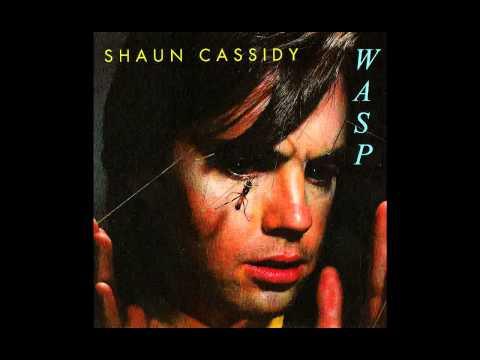 Shaun Cassidy - It