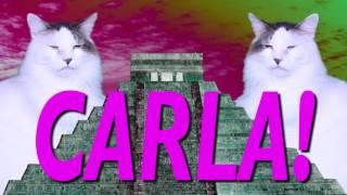 ¡FELIZ CUMPLEAÑOS CARLA! Canción Comica de Cumpleaños