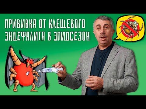 Прививка от клещевого энцефалита в эпидсезон - Доктор Комаровский